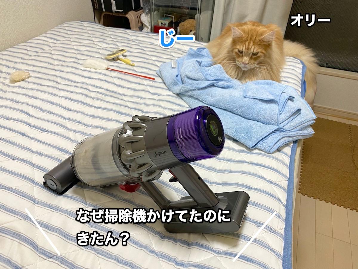 f:id:chikojirou:20200920214743j:plain