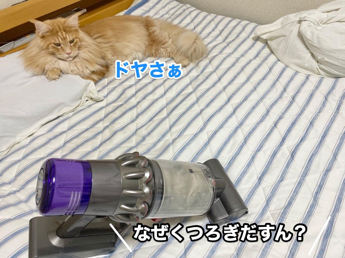 f:id:chikojirou:20200920214746j:plain