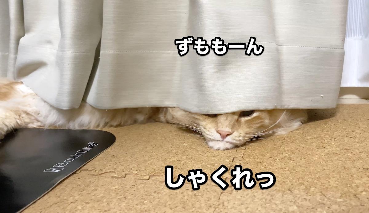 f:id:chikojirou:20200920214755j:plain