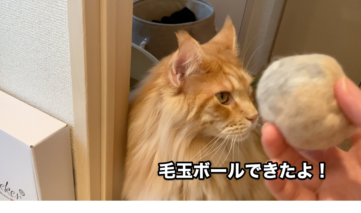 f:id:chikojirou:20200920214821j:plain