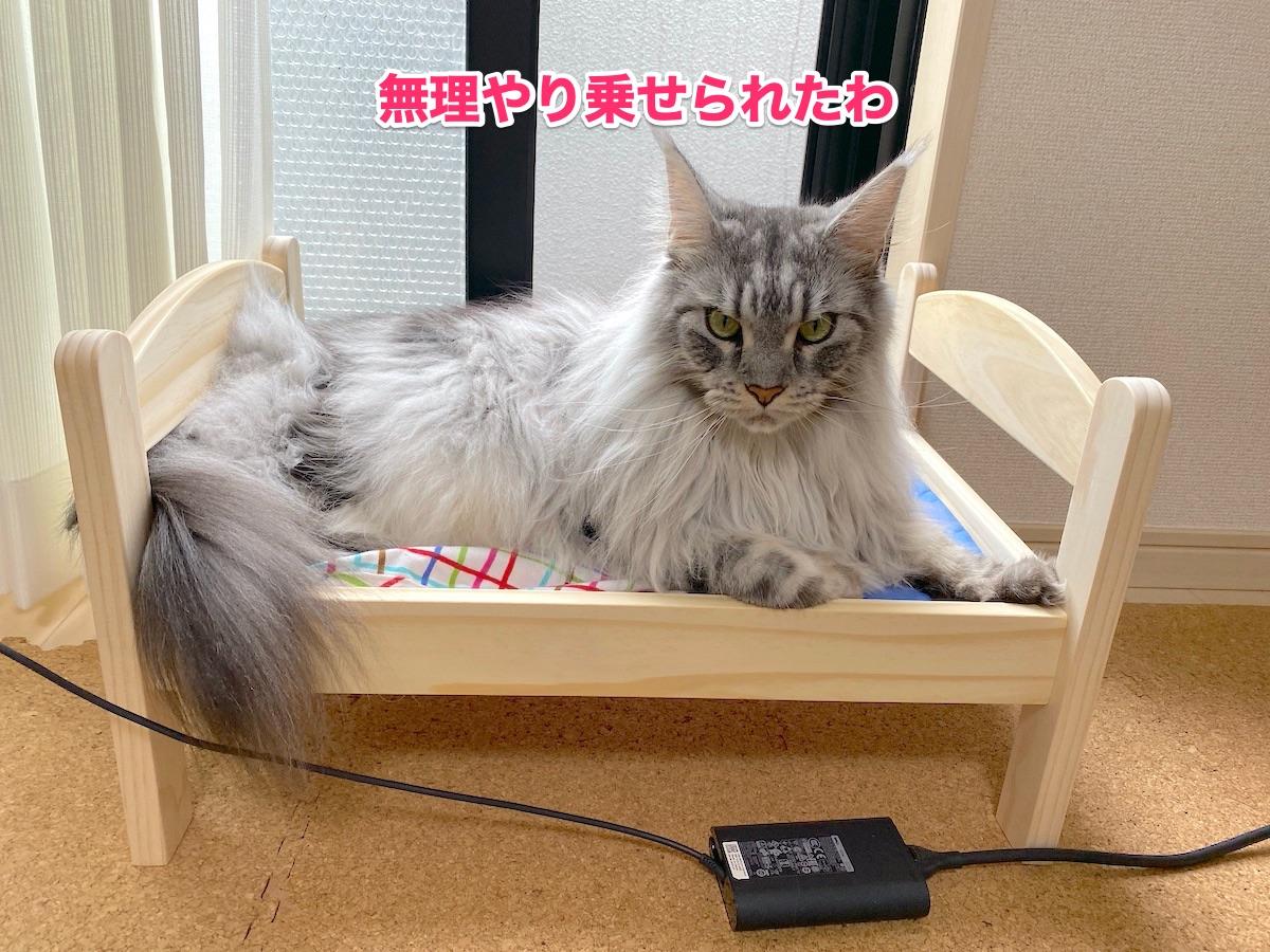 f:id:chikojirou:20200923184513j:plain