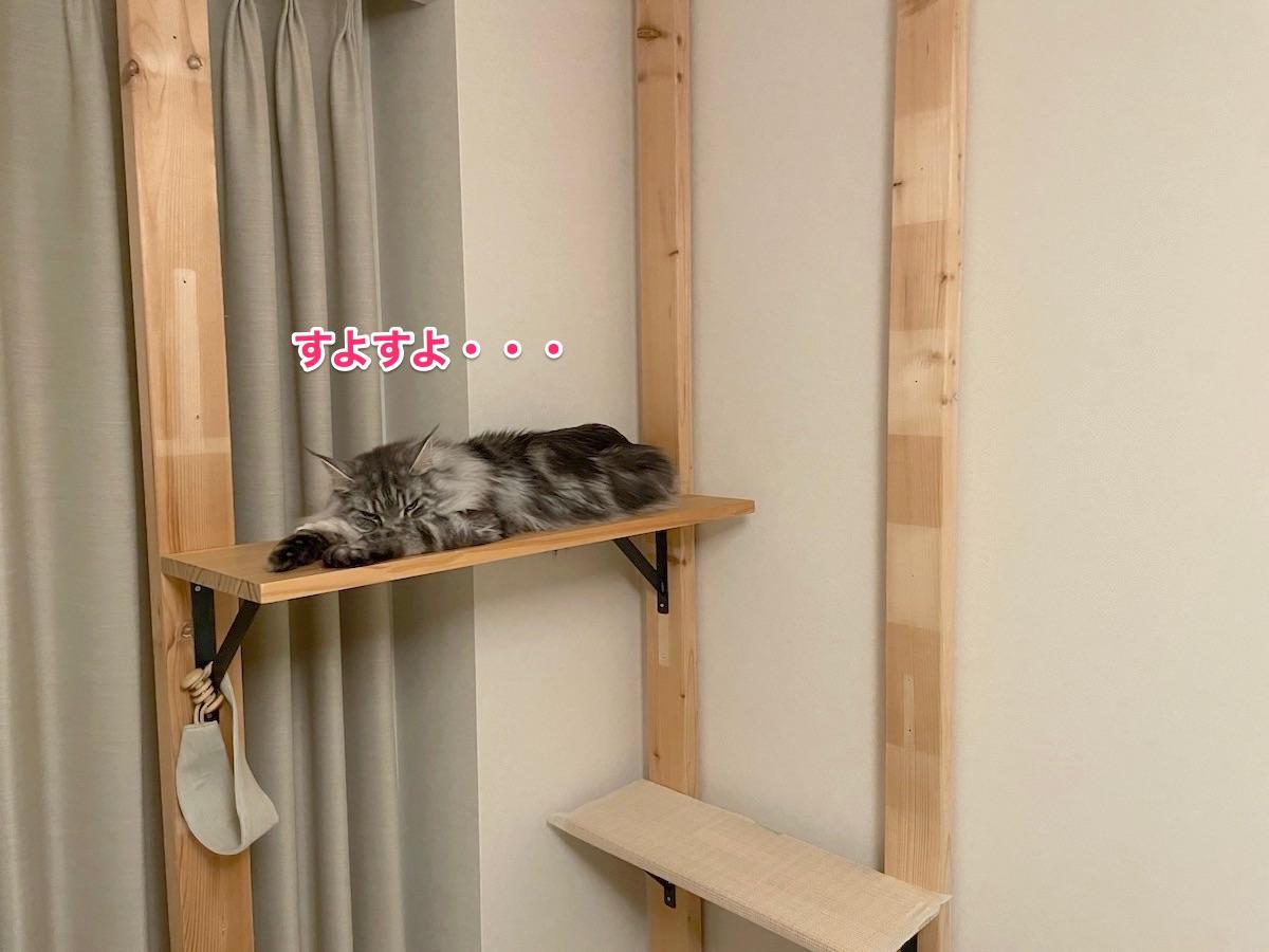 f:id:chikojirou:20210509215019j:plain