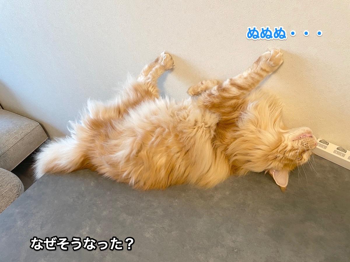 f:id:chikojirou:20210611222826j:plain