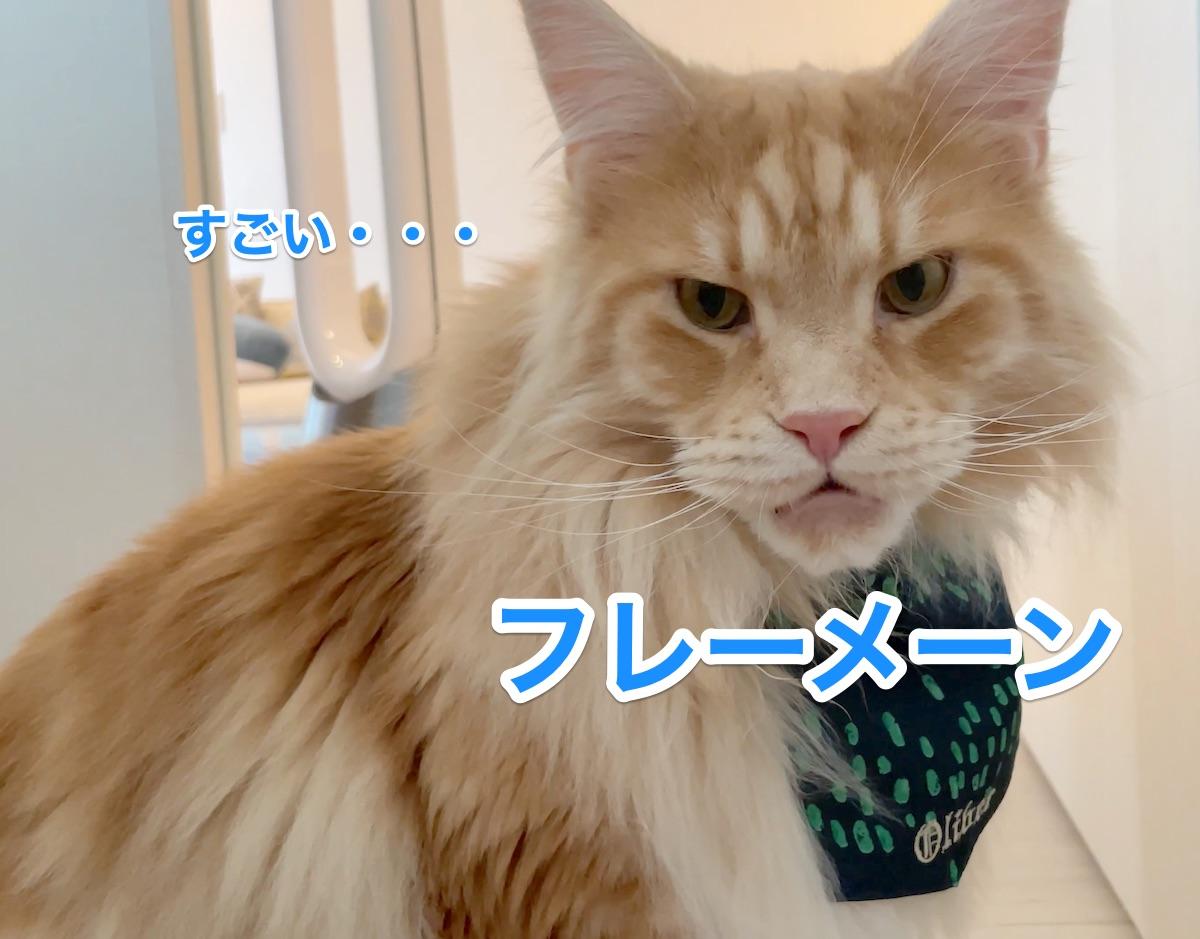 f:id:chikojirou:20210612205858j:plain