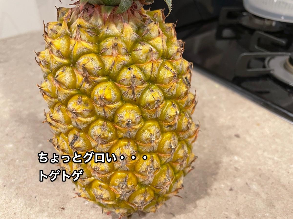 f:id:chikojirou:20210613210154j:plain