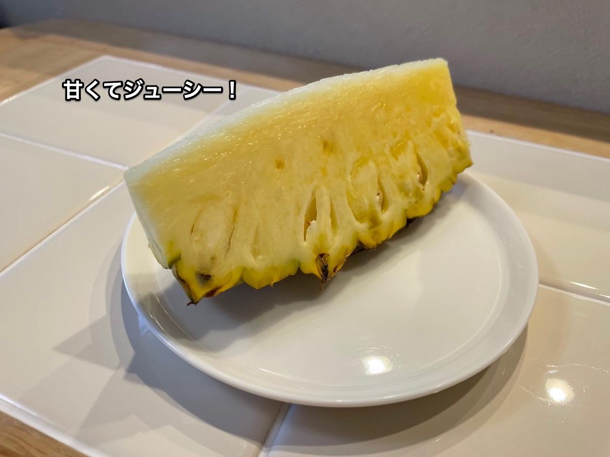 f:id:chikojirou:20210613210158j:plain