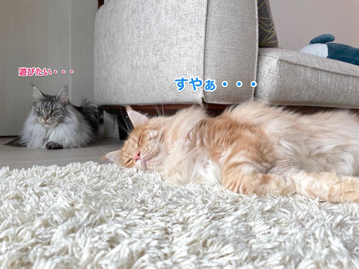 f:id:chikojirou:20210620214645j:plain