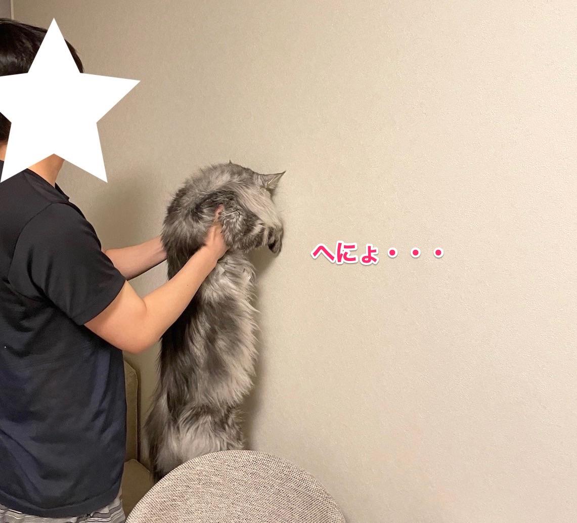 f:id:chikojirou:20210620214703j:plain