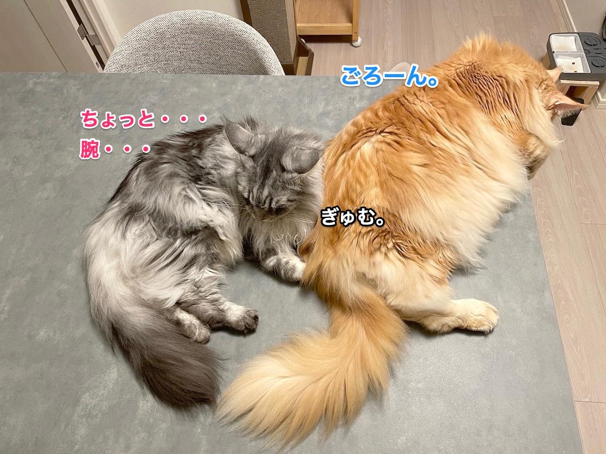 f:id:chikojirou:20210621220553j:plain