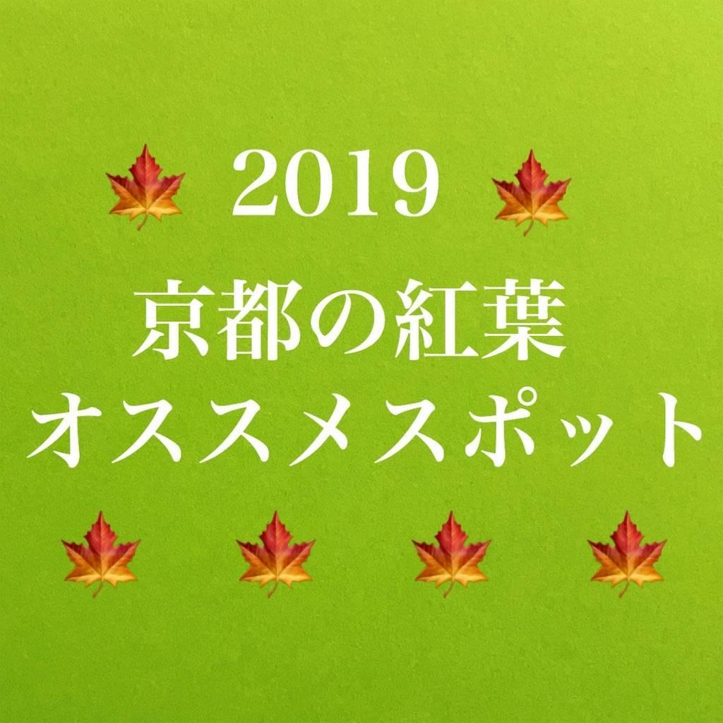 f:id:chikoken:20191109125306j:image