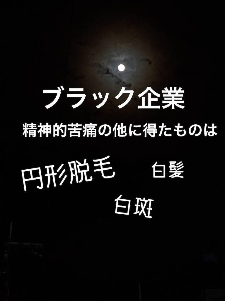 f:id:chikoken:20191203093257j:image
