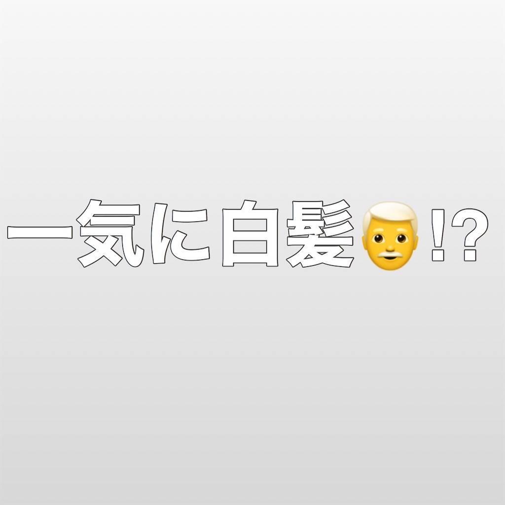 f:id:chikoken:20200122211737j:image
