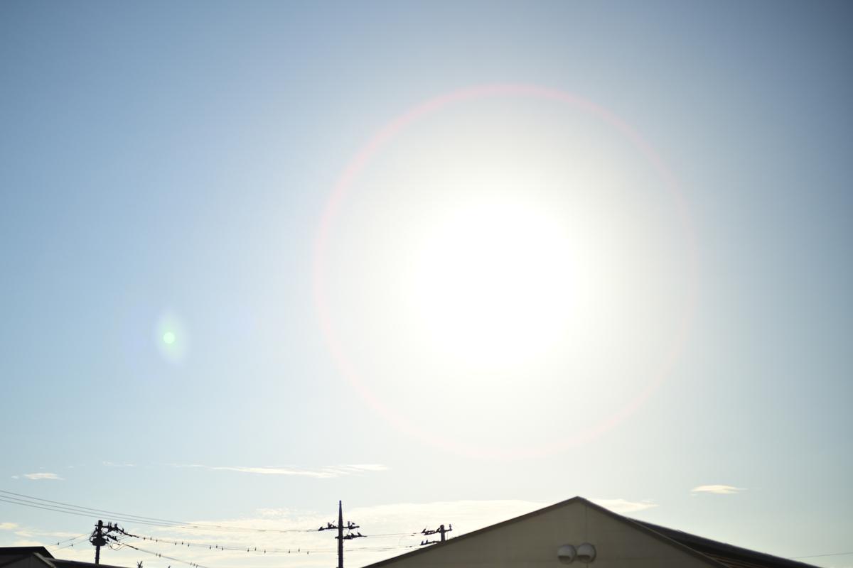 f:id:chiku-revo:20211011173319j:plain