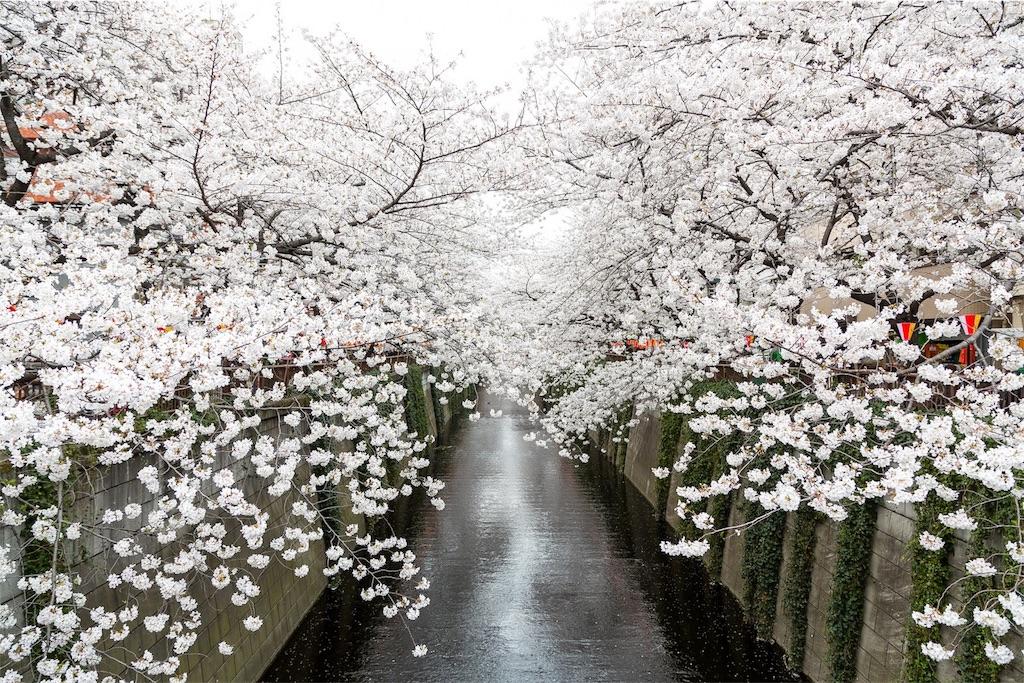 f:id:chikutake:20170615141327j:image