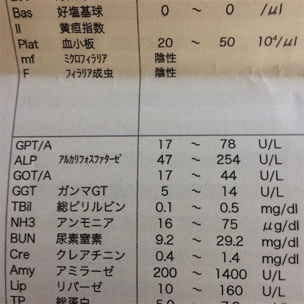 f:id:chikuwansai:20170115203409j:image