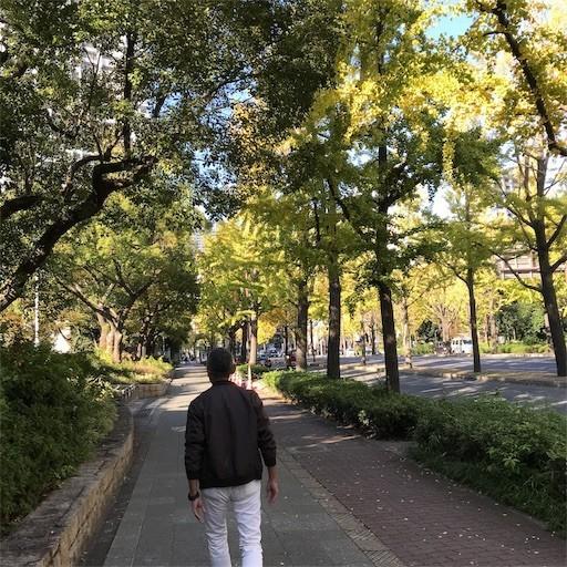 f:id:chikuwansai:20181104100600j:image