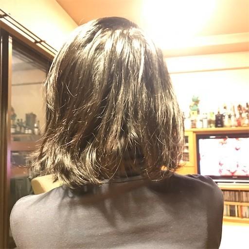 f:id:chikuwansai:20200226193647j:image
