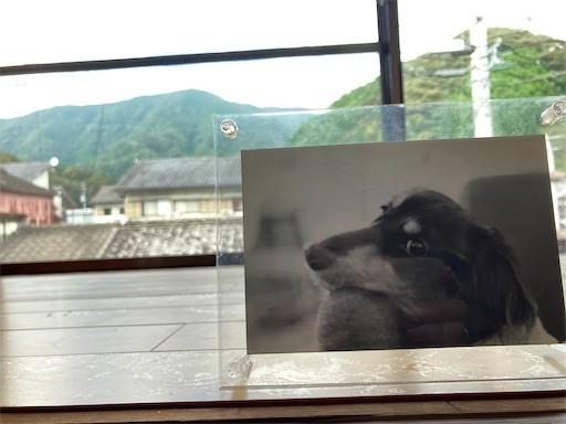 f:id:chikuwansai:20210822095811j:image