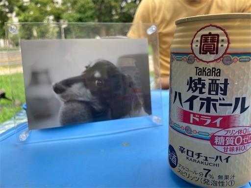 f:id:chikuwansai:20210904111135j:image