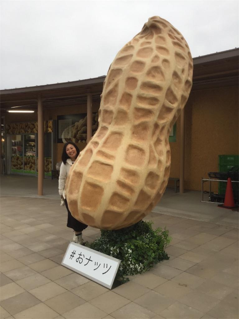f:id:chikyusanpo:20171108172708j:image
