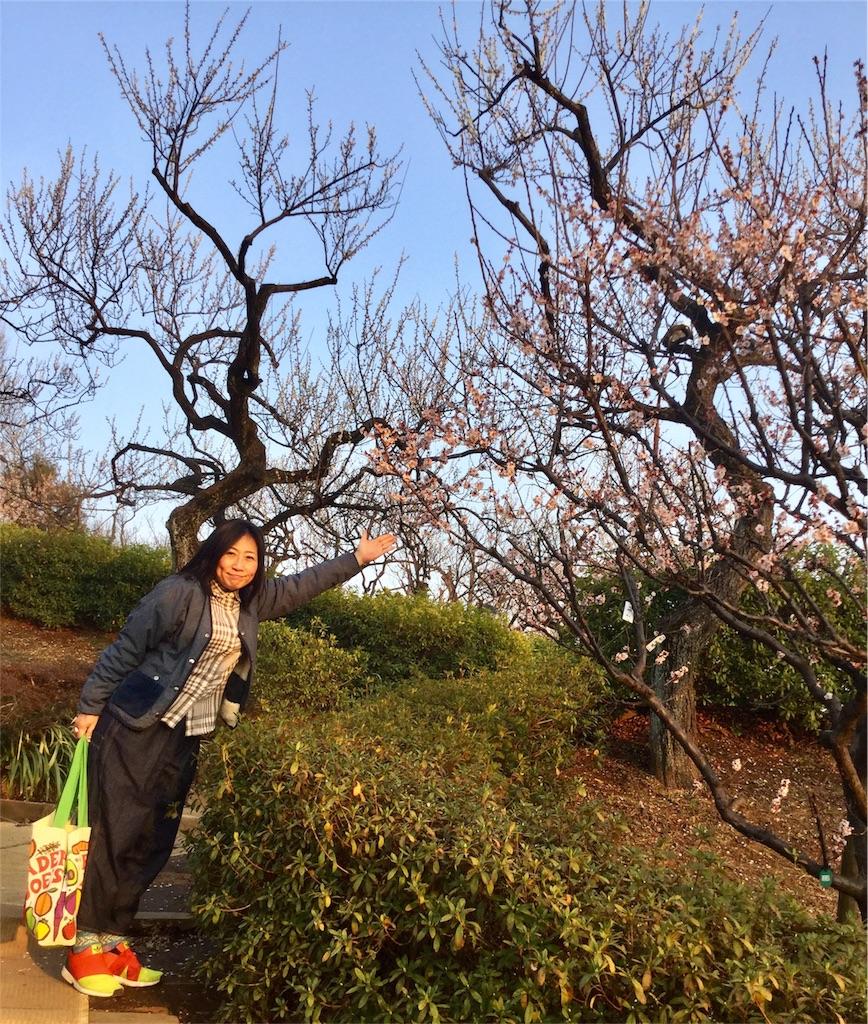 f:id:chikyusanpo:20180313173523j:image