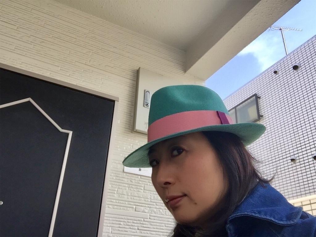 f:id:chikyusanpo:20190216132603j:image