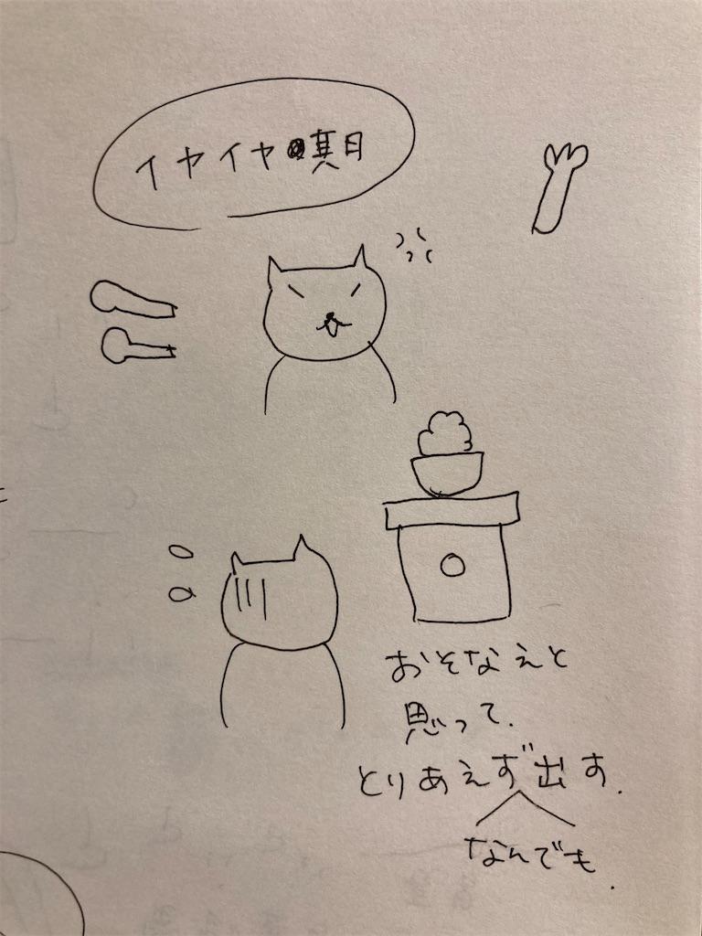 f:id:child_kodomo:20210224000609j:image
