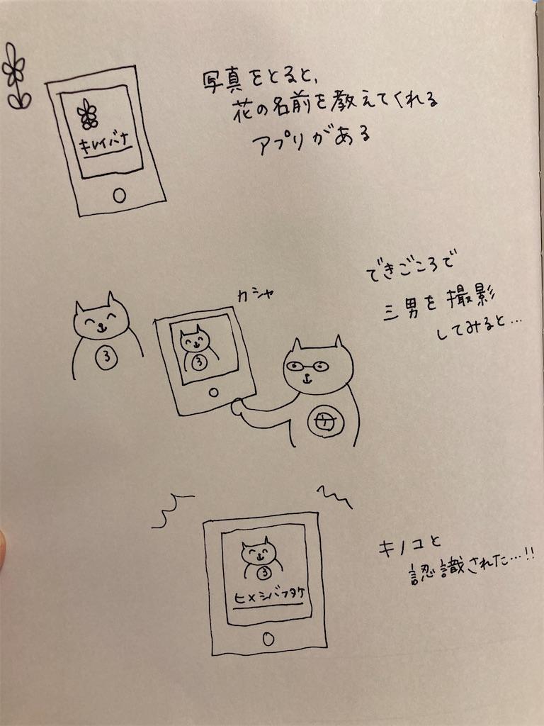 f:id:child_kodomo:20210520234439j:image