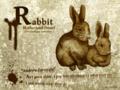 [ネザーランドドワーフ][ウサギ][ペン画][壁紙1024×768]