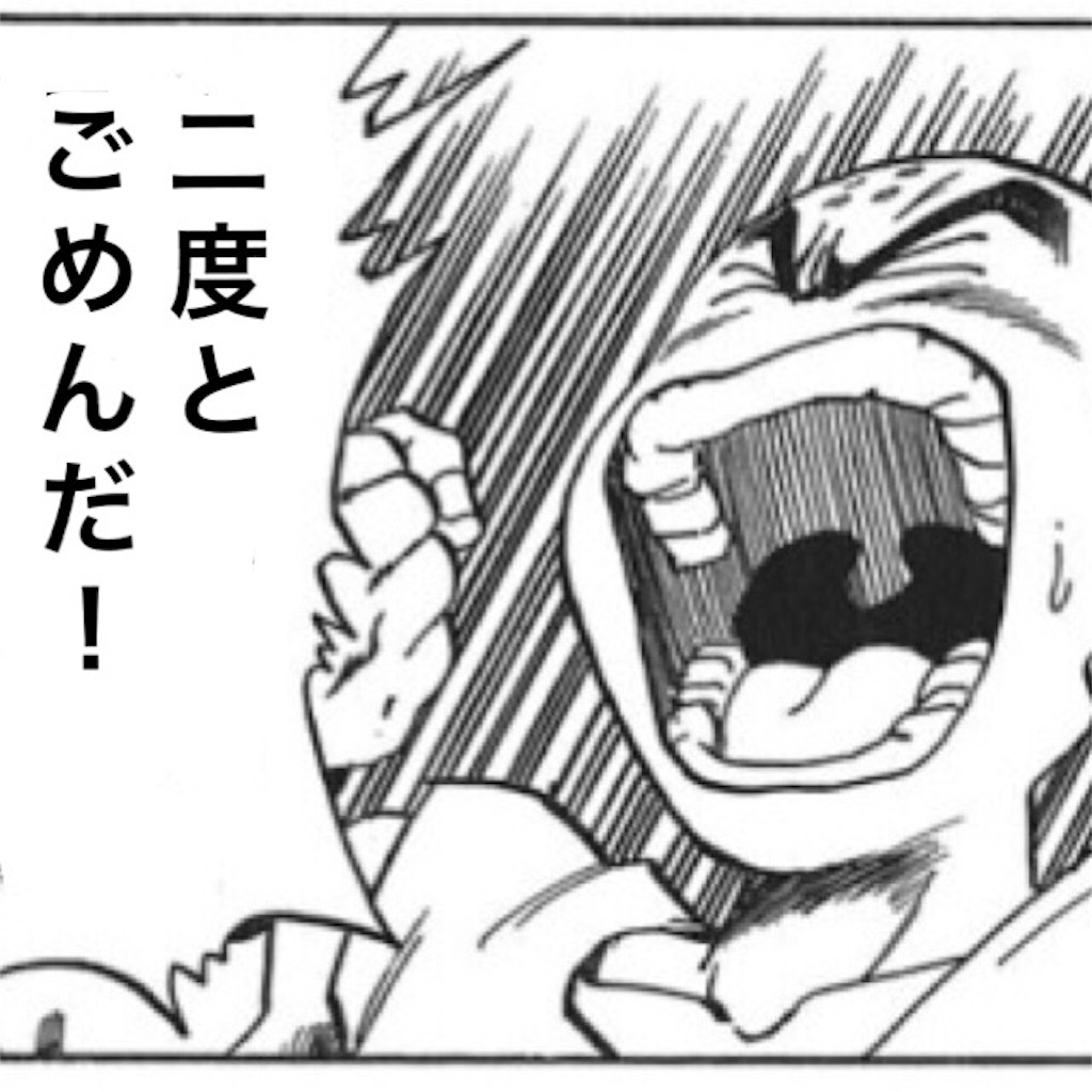 f:id:chiminosuke:20170602075900j:image