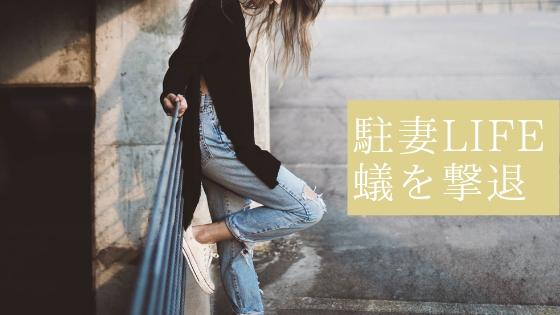 f:id:chinamk:20190427102123j:plain