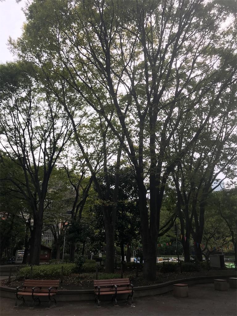 f:id:chinasuki:20191017075859j:image