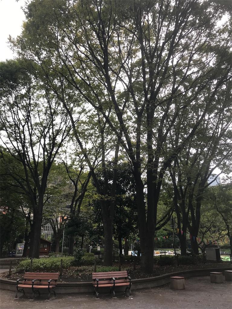f:id:chinasuki:20191017075933j:image