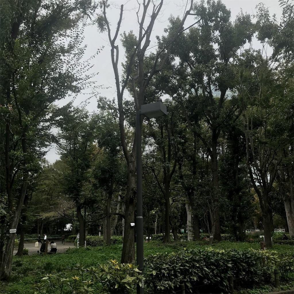 f:id:chinasuki:20191021094228j:image