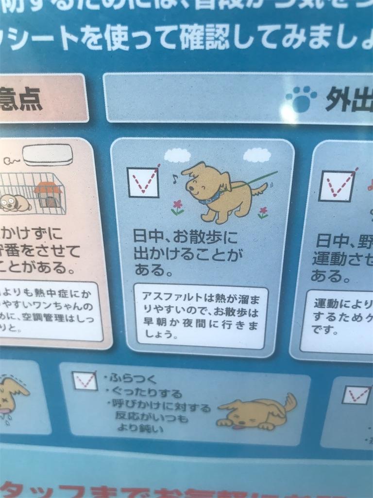 f:id:chinasuki:20210723145248j:image