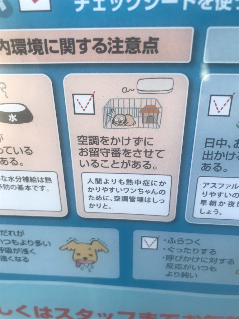 f:id:chinasuki:20210723145252j:image