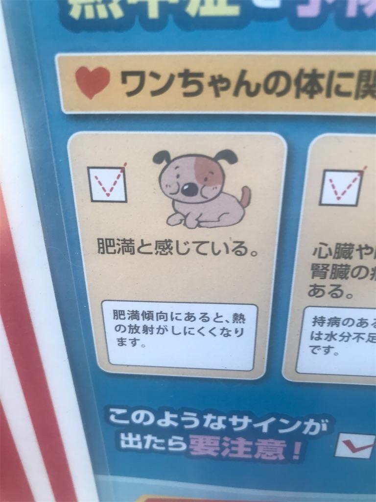 f:id:chinasuki:20210723145310j:image