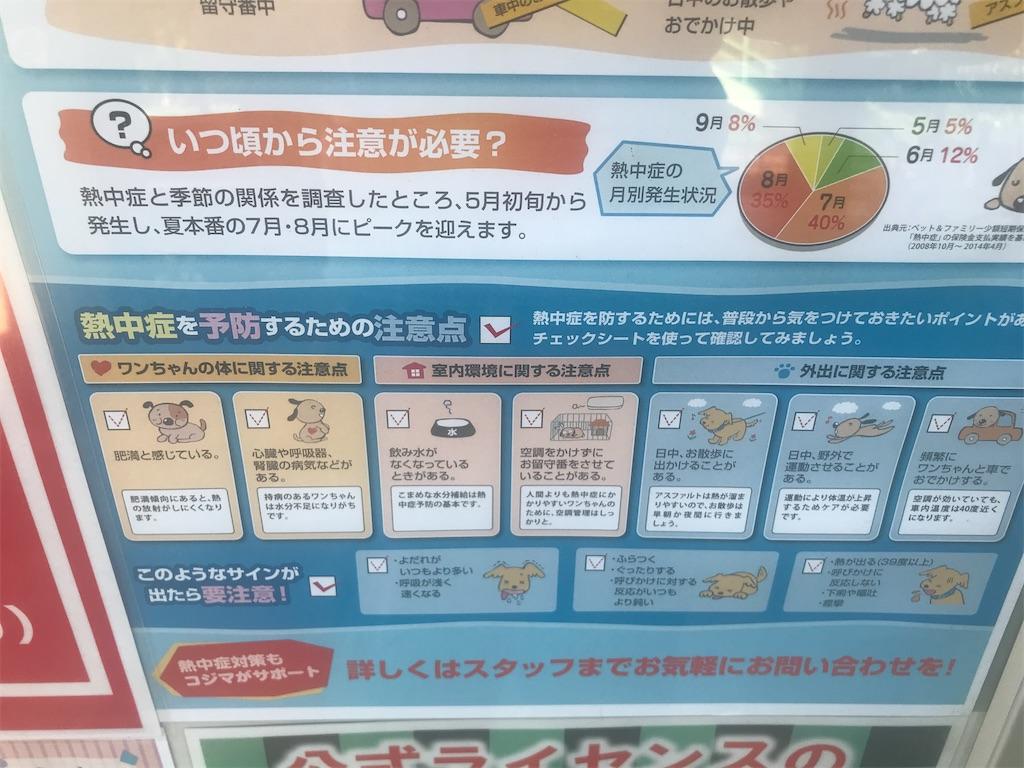 f:id:chinasuki:20210723145317j:image