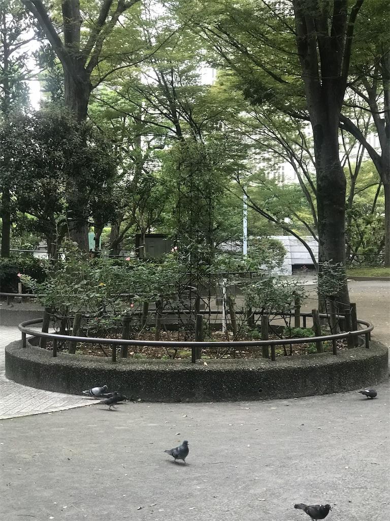 f:id:chinasuki:20210917134717j:image