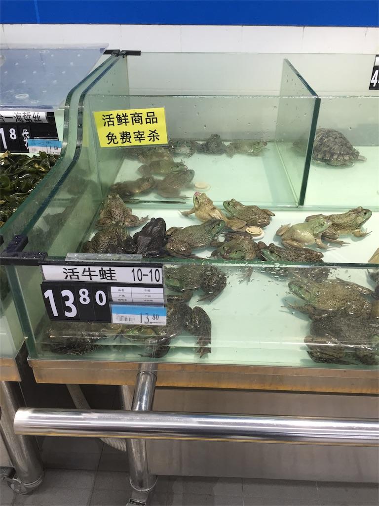 f:id:chinesechat:20161017225307j:image