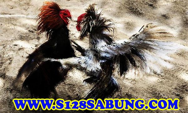 f:id:chinghyun3:20170804003639j:plain