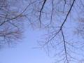 [榛名湖]桜はまだ咲かない
