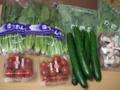 [たべもの]群馬県産の野菜、これ全部で500円だった
