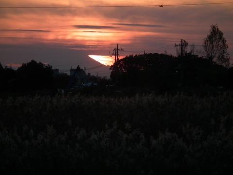 f:id:chinjuh:20111117210917j:image