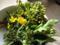 今夜は菜の花のおひたしか炒め物で。