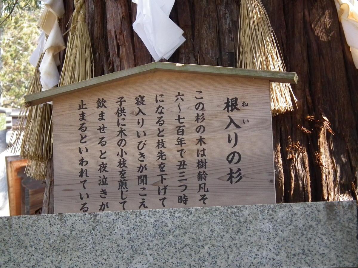 寝入りの杉について説明する看板