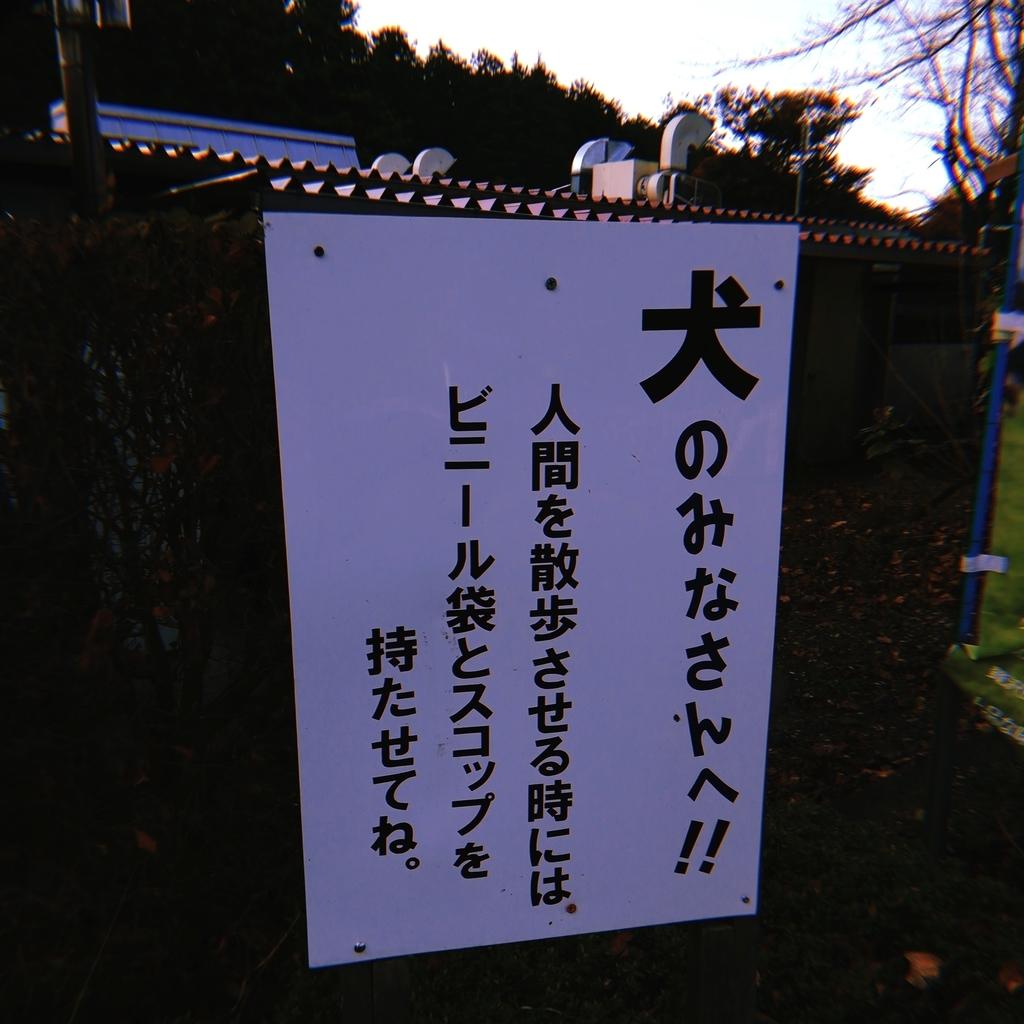 f:id:chinohirose:20181225192204j:plain