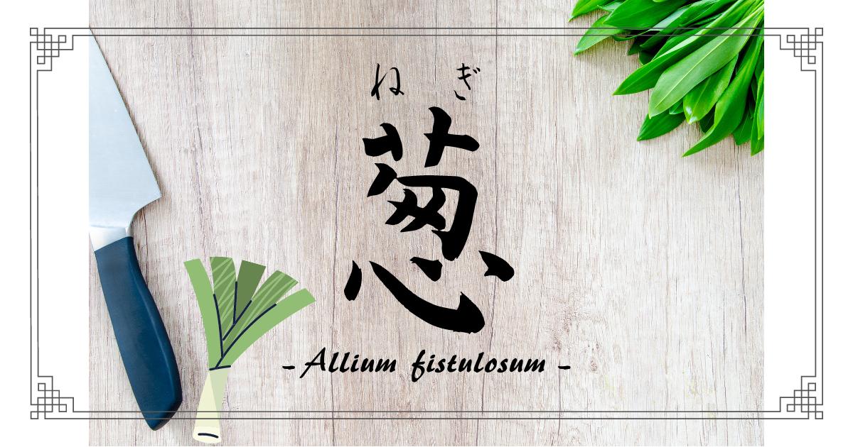 f:id:chinohirose:20210422155003p:plain