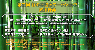 f:id:chinoki1:20101228141728j:image