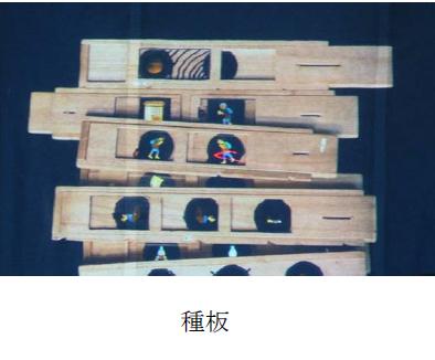 f:id:chinoki1:20150717115902j:image:w220:left